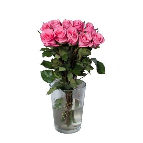 Роза суперпремиум